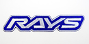 RAYS OFFICIAL NEWロゴ ワッペン